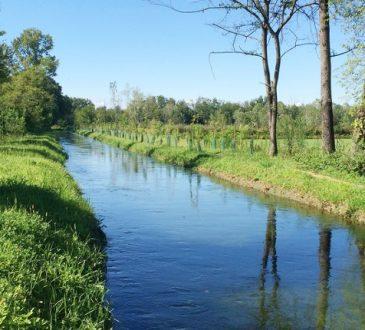 educazione ambientale convenzione tra regione lombardia e parco nord