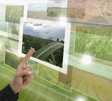 Un simulatore smart per coltivare piante al chiuso anche nello spazio