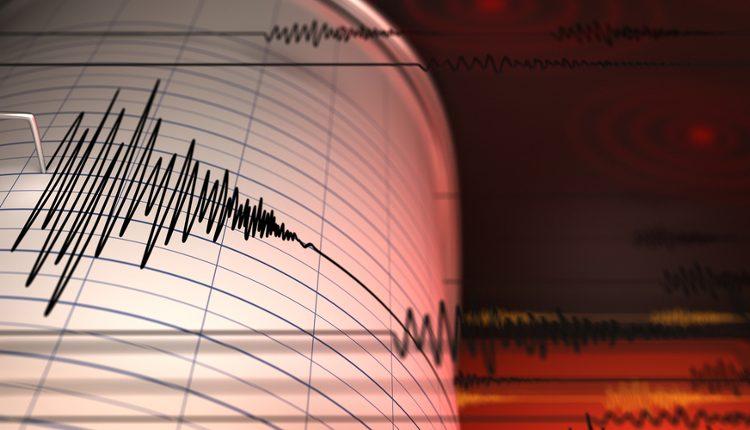 Un marchio per la sicurezza sismica degli edifici italiani
