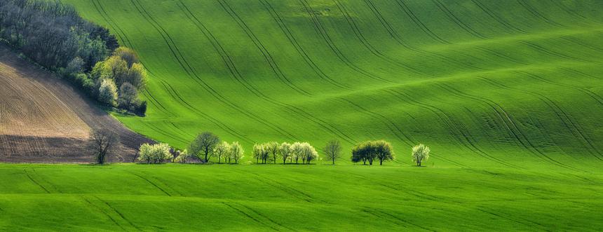Rapporto Green Italy: quanto pesa oggi la Green Economy?