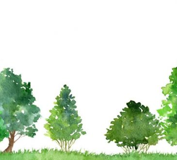 Renzo Piano progetta gratis le periferie italiane di domani